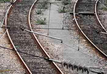 Orry-la-Ville : un train percute un sanglier et une panne électrique est signalée, les retards s'enchaînent ce vendredi matin - actu.fr