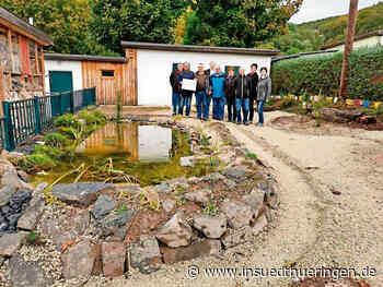 Sonneberg: Der Ellers-Teich hat viele Freunde   inSüdthüringen.de - inSüdthüringen.de