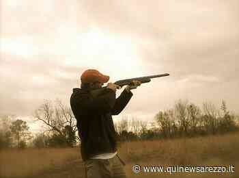Parte un colpo di fucile, impallinato cacciatore - Qui News Arezzo