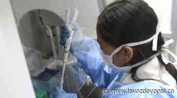 Dos casos positivos de COVID-19 en Paz De Ariporo - Noticias de casanare - lavozdeyopal.co