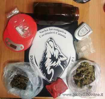 Aci Catena, i Lupi arrestano un fattorino della droga - Gazzettinonline