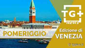 San Dona' di Piave, sembrava una rissa, era una rapina: cinque denunce - TG Plus NEWS Venezia - TG Plus - Tg Plus
