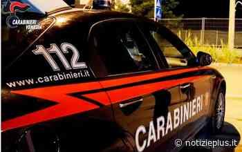 San Dona' di Piave, 66enne denunciato per spaccio di stupefacenti e porto abusivo d'armi - Notizie Plus - Notizie Plus