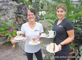 Café Orchidee in Birkenau-Hornbach: Frühstück, Zoo & Gärtnerei - Echo-online