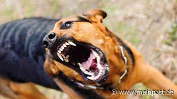 Maroldsweisach: Hund beißt 14-jähige Zeitungsausträgerin - Main-Post