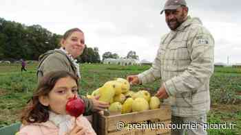 Pommes et courges font la fête ensemble à Saint-Gratien, retour en images - Courrier picard