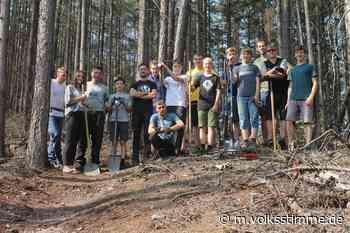 Neue Strecken für Mountainbiker im Harz - Volksstimme