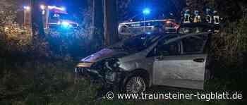 Trostberg: Reh ausgewichen und im Graben gelandet – Fahrer bei Unfall verletzt - Traunsteiner Tagblatt