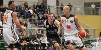 Aschersleben Tigers verlieren Derby gegen Wolmirstedt: 56:86-Niederlage in 1. Regionalliga Basketball - Mitteldeutsche Zeitung