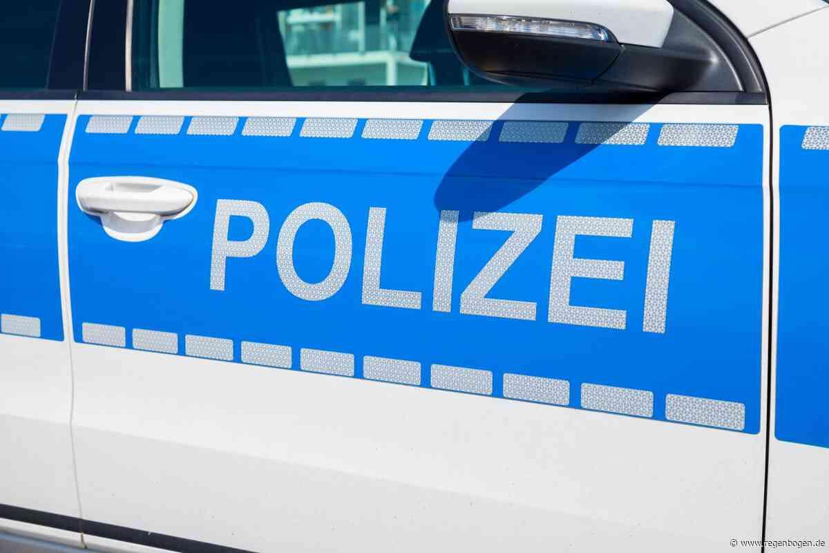 Kirchzarten: Bahnverkehr war wegen Prügler eineinhalb Stunden unterbrochen - Regenbogen
