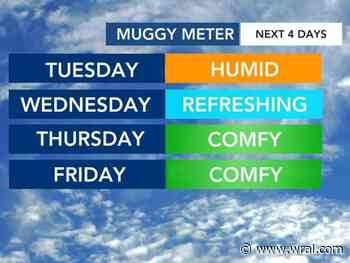 After muggy Tuesday, stretch of milder, sunny days ahead