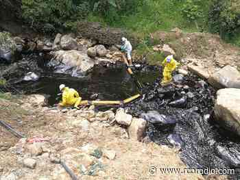 Plan de contingencia en el Meta por fuga de nafta que afecta la flora y fauna - RCN Radio