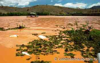 Mais 25 moradores de Baixo Guandu recebem indenizações da Renova - colatinaemacao.com.br