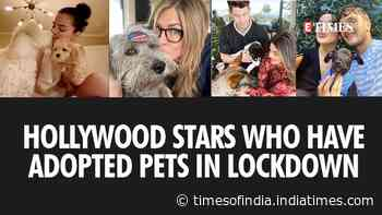 Hollywood stars who have adopted pets in lockdown