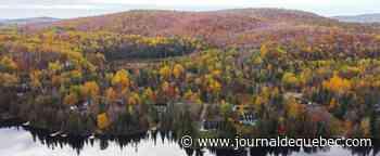 La Vallée-de-la-Gatineau: magnifique domaine de dix acres pour 336 000 $
