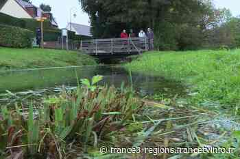 A Chaumont-en-Vexin, un projet de parking divise la population - France 3 Régions