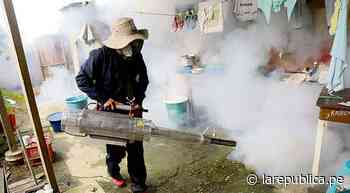 Lambayeque: aumentan casos de dengue en Íllimo [VIDEO] - larepublica.pe