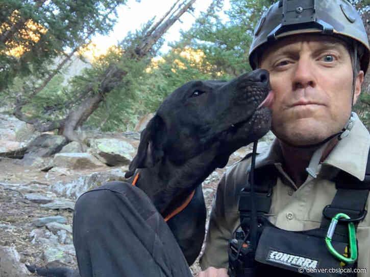 Dog Found Safe Days After Rollover Crash In Telluride