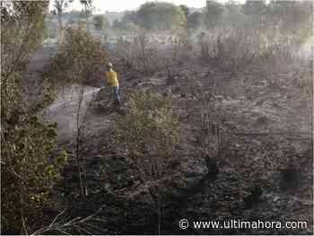 Bomberos controlan incendio forestal provocado en Itapúa Poty - ÚltimaHora.com
