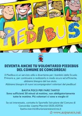 Concordia sulla Secchia, per raggiungere la scuola primaria c'è il piedibus - SulPanaro