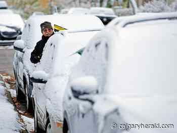 Calgary wakes up blanketed in first snowfall of the season - Calgary Herald
