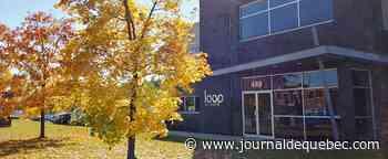 Loop Industries: rapport accablant pour une entreprise d'ici