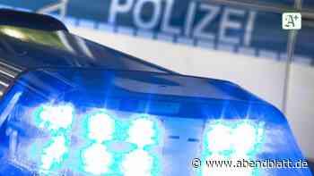 Ahrensburg: Diebe stehlen nachts am Starweg einen Radlader - Hamburger Abendblatt