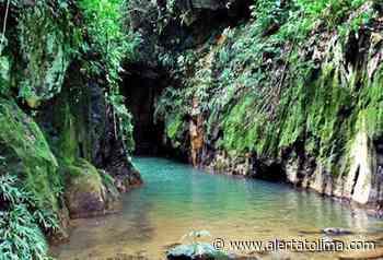 Turismo fue reactivado en Falan – Tolima - Alerta Tolima