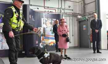 Queen BACKLASH: Fury at monarch and Prince William after public appearance