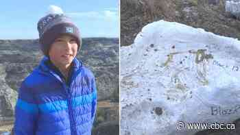 Dinosaur skeleton found by 12-year-old near Drumheller, Alta., hailed as 'significant discovery'