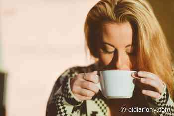Remedios matutinos: Lo que una taza de té de eucalipto diaria puede hacer por tu salud - El Diario NY