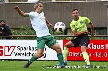 Fußball in Ditzingen: Gabi ist schon Heimerdinger - Leonberger Kreiszeitung