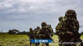 Temor en Chocó: asesinan a campesino tras incursión armada en Nóvita - ElTiempo.com