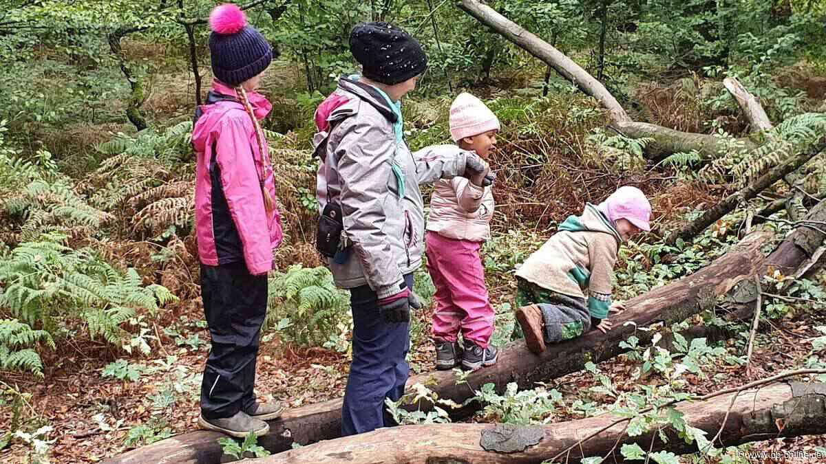 In Obertshausens christlichem Naturkindergarten werden Motorik und Kreativität gefördert - op-online.de