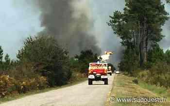Vidéo. Gironde : 20 hectares détruits dans un incendie au Barp (33), le feu a été maîtrisé - Sud Ouest