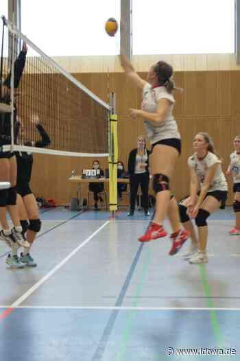 Niederviehbach: TSV-Volleyballer holen drei Punkte - idowa
