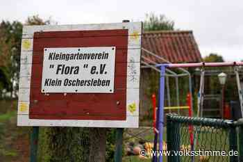Streit um Flora in Oschersleben entschieden - Volksstimme