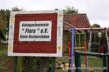 Oschersleben: Entscheidung ja, Veränderung nein - Volksstimme