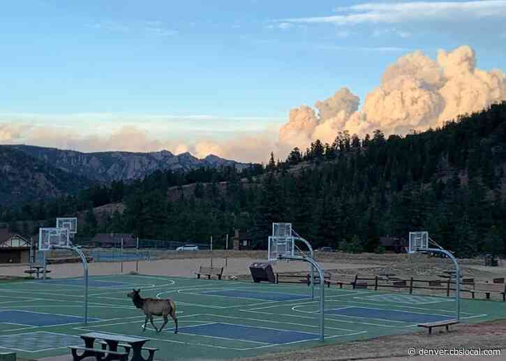 'Extreme Fire Behavior' Expected At Cameron Peak Fire On Saturday
