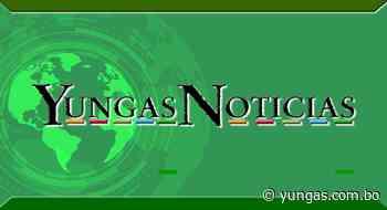 Hotel Monarca en Chulumani – Yungas Noticias – YN - Yungas Noticias - YN