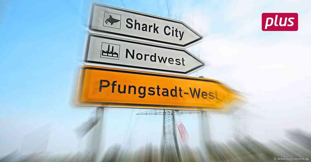 Pfungstadt wartet auf den Hai - Echo Online