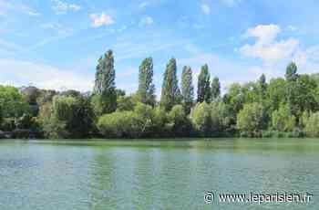Retour à la normale sur les lacs de Viry-Chatillon et Grigny - Le Parisien