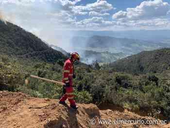 Liquidan incendio forestal de proporciones en Tarqui - El Mercurio (Ecuador)