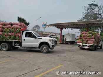 Productores de Ospino tienen asignadas 3 bombas para surtir gasolina - Últimas Noticias