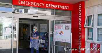 UK coronavirus hospital deaths up by 69 as expert warns vaccine '6 months away'