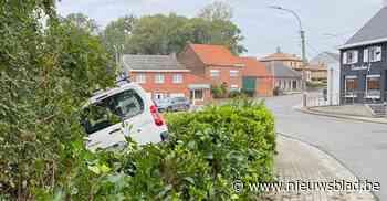 Automobilist parkeert wagen in de struiken