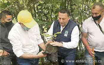Más árboles para el Jardín Botánico de Belén de Umbría - El Diario de Otún