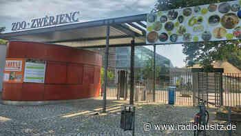 Verlust und Besucherplus im Zoo Hoyerswerda - Radio Lausitz