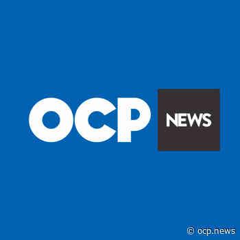 Blumenau recebe proposta para implantação de teleférico ligando pontos turísticos do Centro - OCP News