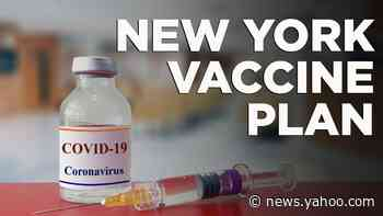 Cuomo unveils vaccine plan for New Yorkers